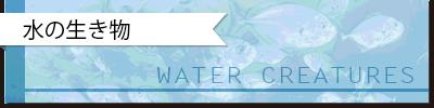 QUIZ:あの名前の由来は?|水の生き物の語源